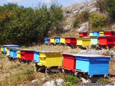 подхранване на пчелни семейства