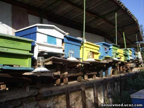 поилка за пчели